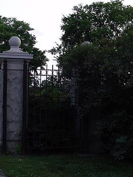 The Gate by Anna Villarreal Garbis