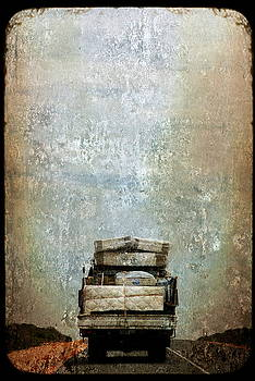 The Grapes Of Wrath by Sonia Stewart