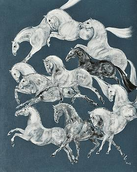 The Grays by Liz Pizzo