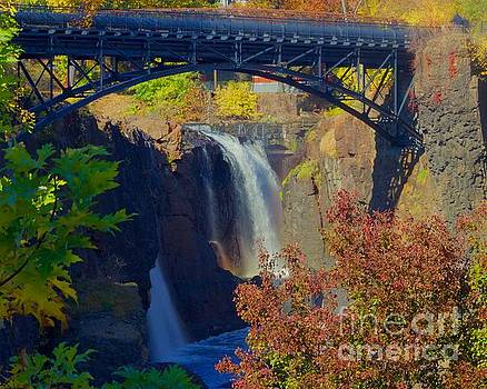 The Great Falls by Alice Mainville