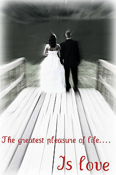 The greatest pleasure of life by Trisha Scrivner