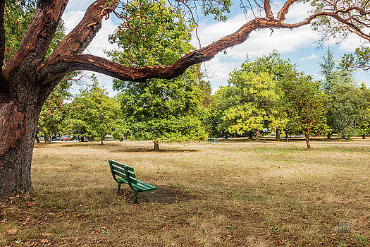 The Green Bench by Claude Dalley