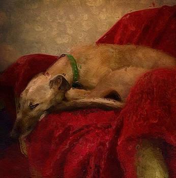 The Greyhound by Sue Fulton