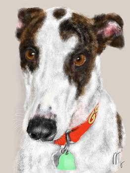 The Greyhound With a Red Collar by Lois Ivancin Tavaf
