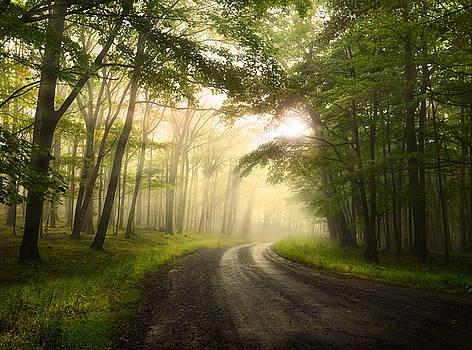 The Guiding Light by Lj Lambert