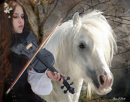 The Gypsy Violin by Fran J Scott