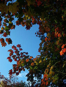 The Heart of Fall by Ken Day