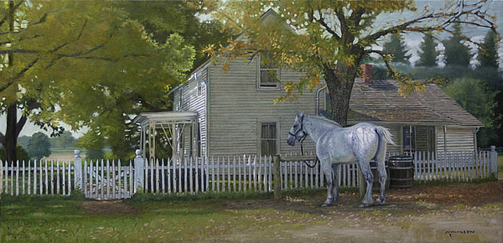 The Home Place by Michael Wilson