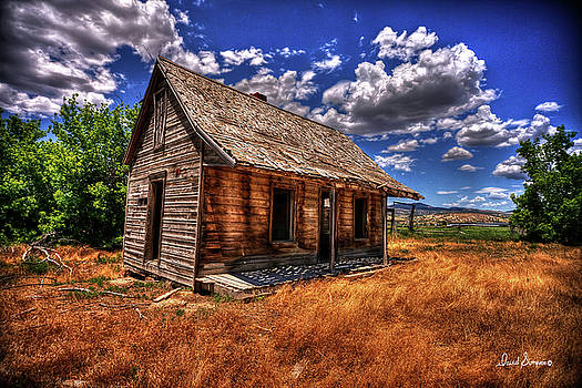 The Homestead by David Simpson