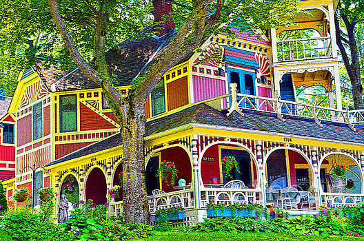 The House of Many Colors by Lydia Holly