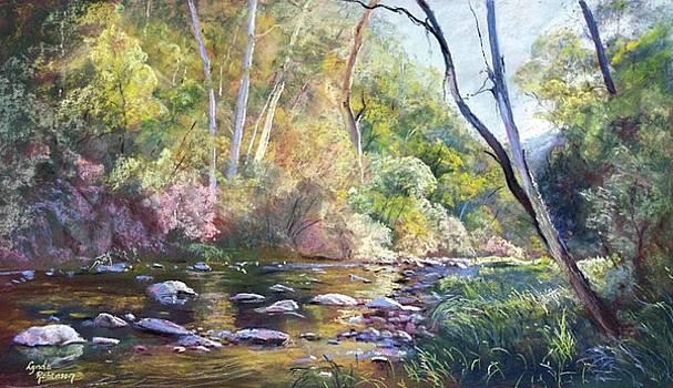 The Howqua by Lynda Robinson