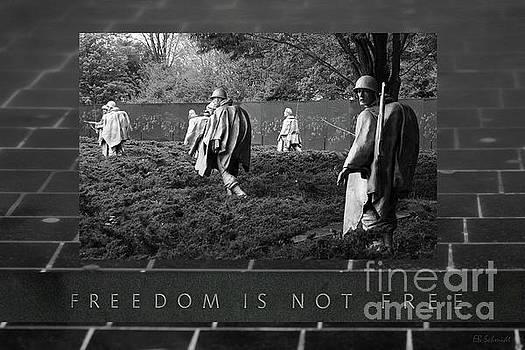 The Korean War Memorial by E B Schmidt