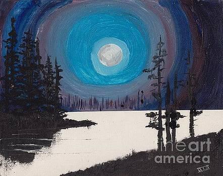 The Lake by David Jackson