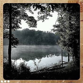 The Lake by Tina Valvano