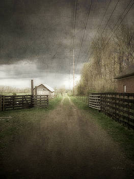 The Lane at Angustown Farm 2 by Cynthia Lassiter