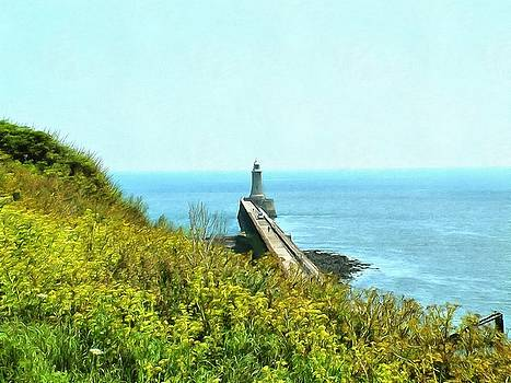 The Lighthouse at the Point by Cindy Nunn