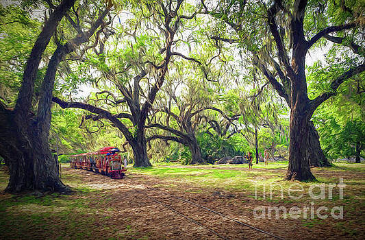 The Little City Park Train - New Orleans by Kathleen K Parker