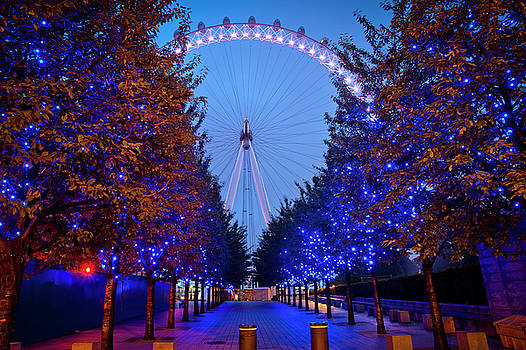 The London Eye at Night by Donald Davis