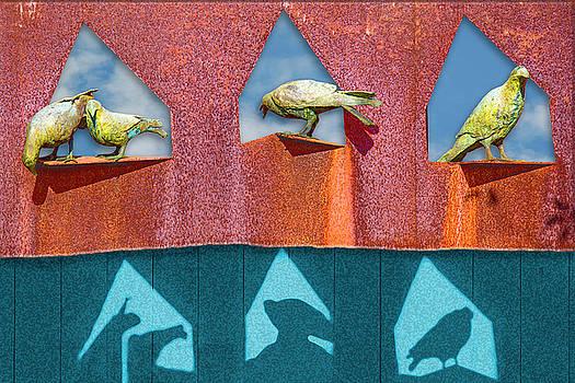 The Lookout by Paul Wear