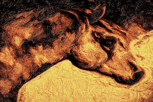 The Mare at Tierra Amarilla by Terry Fiala