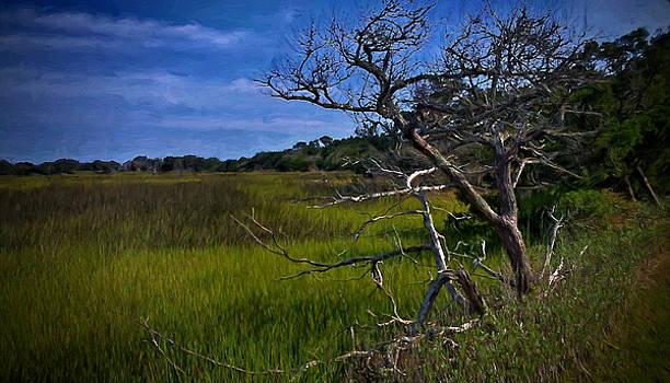 Dave Bosse - The Marsh