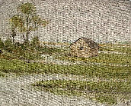 The Marsh House by Amy Bernays