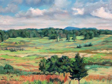 The Meadow - Big Meadows on Skyline Drive by Bonnie Mason