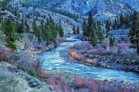 The Mighty Truckee by Nancy Marie Ricketts