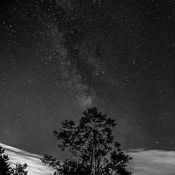 Steve Harrington - The Milky Way 2 bw