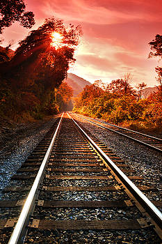The New Dawn by Lj Lambert