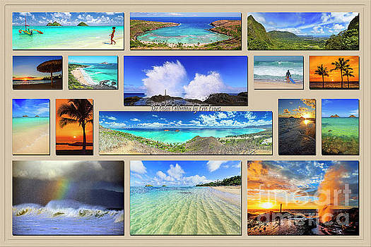 The Oahu Collection by Aloha Art