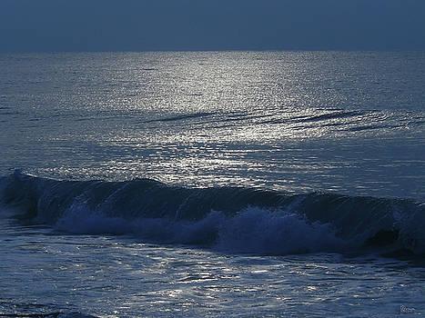 The Ocean Calls by Jeff Breiman