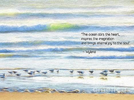 The Ocean by Peggy J Hughes