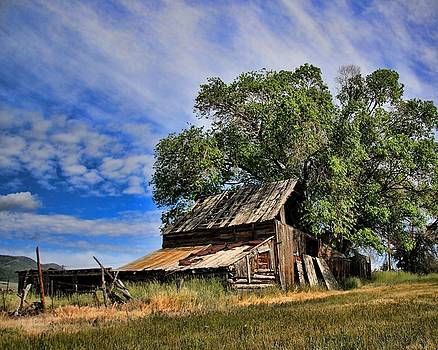 The Old Barn by Gene Praag