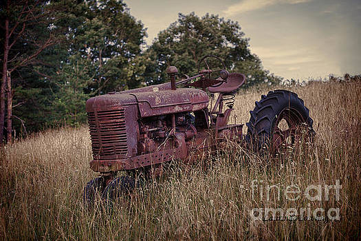 The Old Farmall by Laurinda Bowling