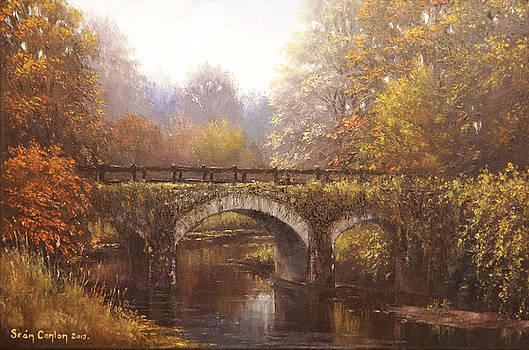 The Old Footbridge at Garryhinch by Sean Conlon