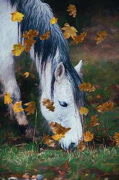 The Old Gray Mare-Painting by Ericamaxine Price