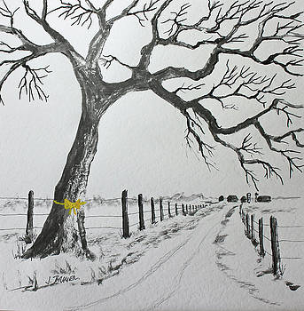 The Old Oak Tree by Jack G Brauer