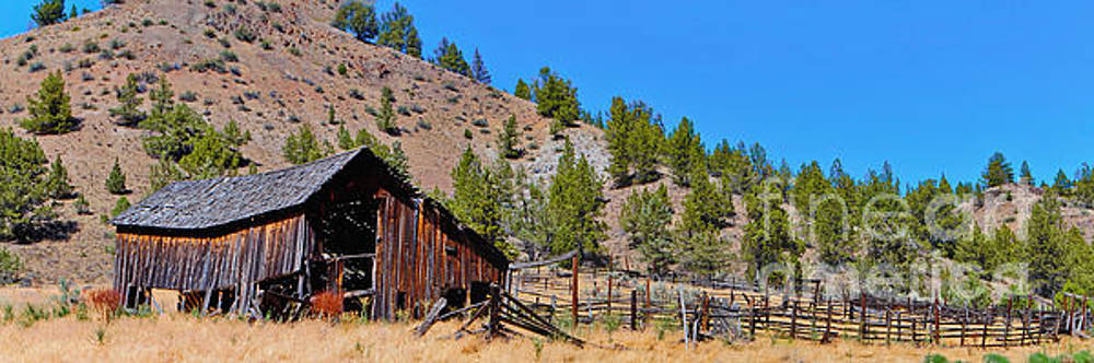 The Old Pine Creek Ranch Barn and Coral by Ansel Price