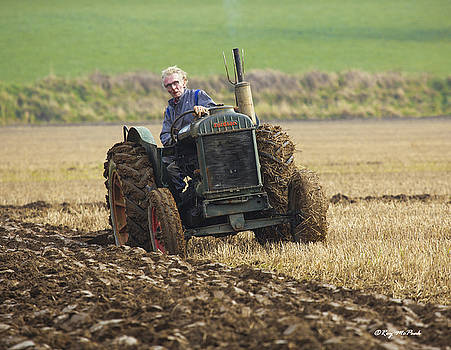 The Old Ploughman by Roy McPeak