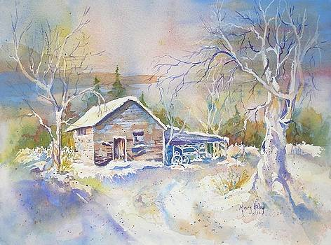 The Old Shed by Mary Haley-Rocks