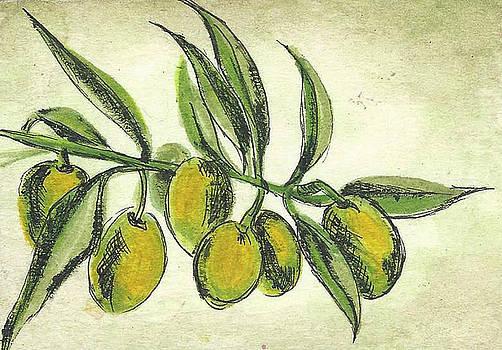 The Olives by Karolina Wicha