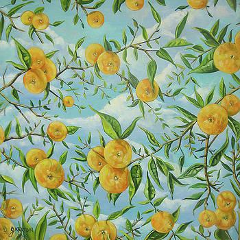 The Orange Tree by John Keaton