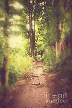 The Path Home by Pete Edmunds