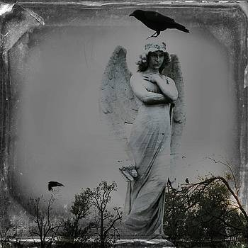 The Perch Of An Angel by Gothicrow Images