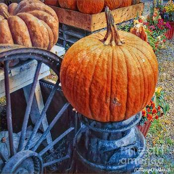 The  Perfect  Pumpkin by MaryLee Parker