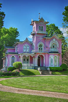 The Pink House by Guy Whiteley