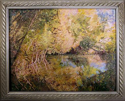 The Pond by Natalya Shvetsky