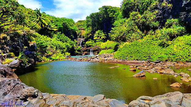 The Pools of Ohe'o by Michael Rucker