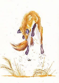 The Provisional Hunter by Debra Hall
